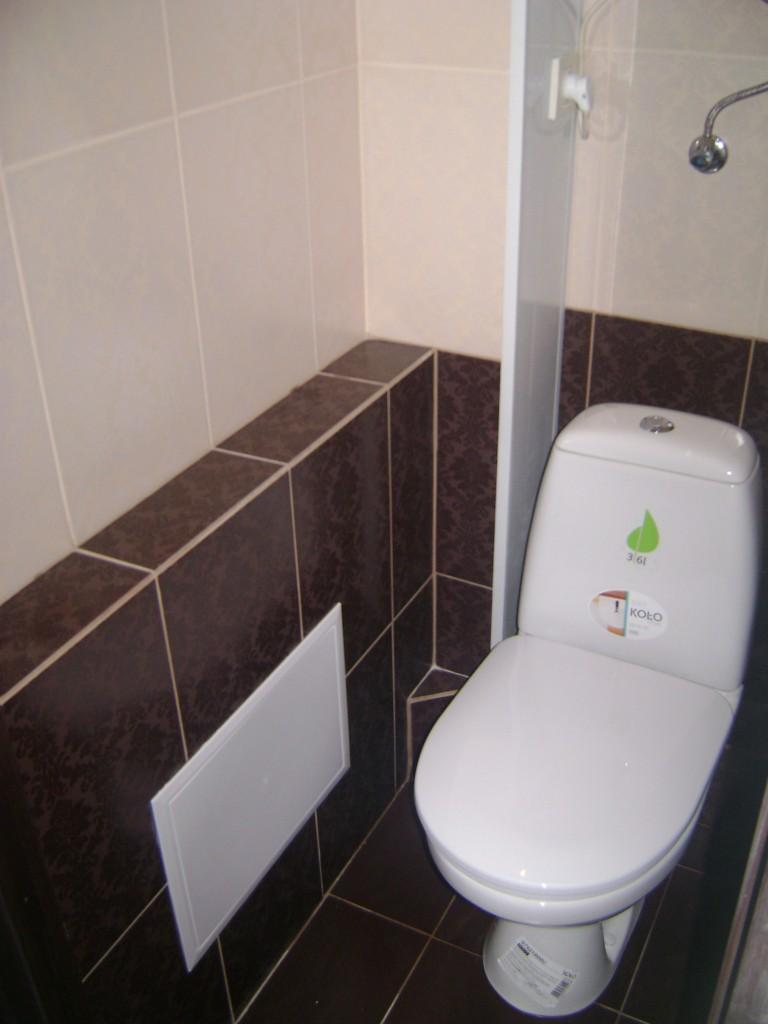 remont-tualeta (1)